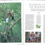 Dorset Magazine