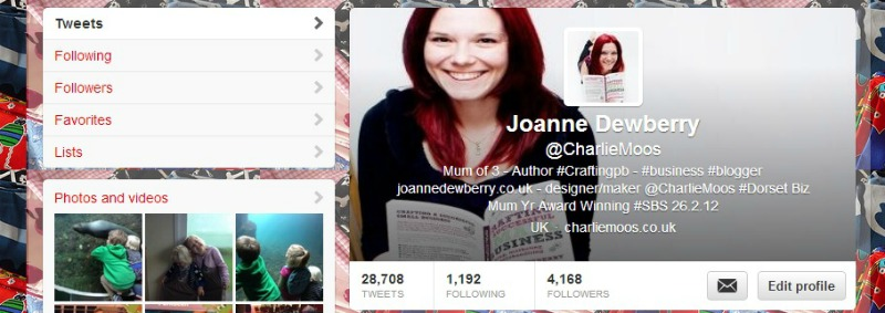 An image of an optimised Twitter profile for businesses and bloggers