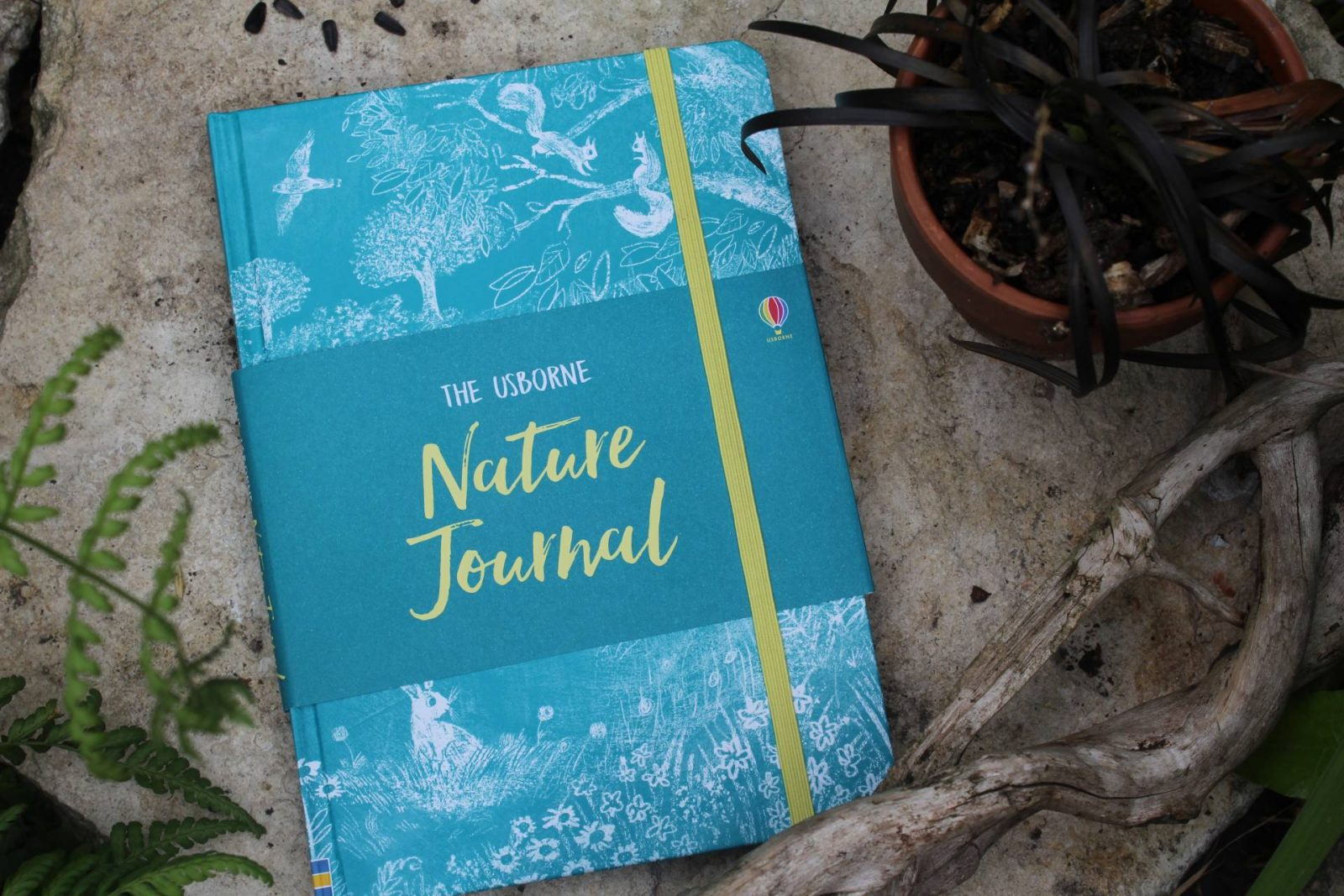 Usborne Nature Journal (Review + Giveaway)